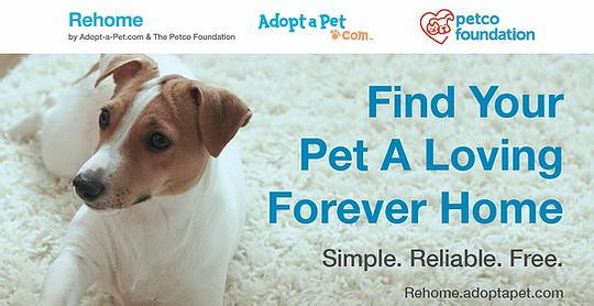 Rehome Pet Relocator